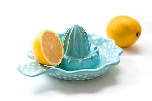 Mentolový odšťavovač na citrusy