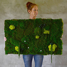 Obrazy - Machový obraz zo stabilizovaných rastlín na stenu - 6932981_