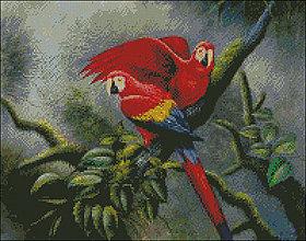 Návody a literatúra - Papagáje - predloha na vyšívanie - 6933347_