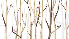 Veľký les a rôznorodé vtáctvo
