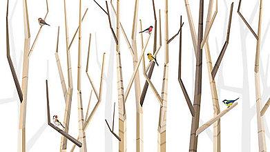 Grafika - Veľký les a rôznorodé vtáctvo - 6935236_