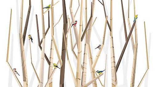 Veľký les a rôznorodé vtáctvo - formát na výšku