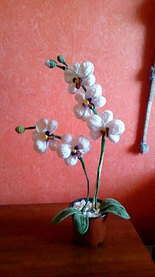 Dekorácie - háčkovaná orchidea - 6942587_