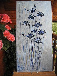Obrazy - Zo zimnej záhrady - 6946034_