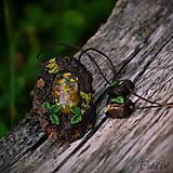 Náhrdelníky - Levanduľový les - náhrdelník s kvetmi - 6946535_