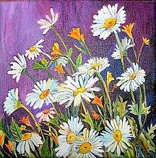 Obrazy - Margaréty, obraz kvetov - 6960724_