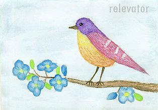 Kresby - Vták 2 - 6963561_