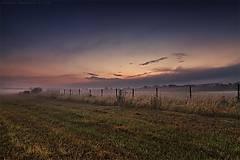 Obrazy - Silence Tells More XXIV - 6966186_