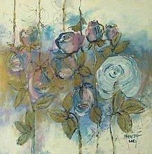 Obrazy - Neha v ruži - 6973479_
