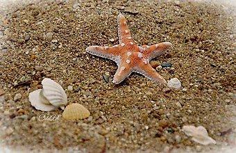 Obrazy - Na pláži - obraz na plátne - 6978976_