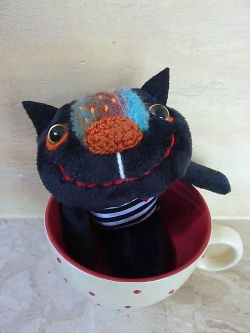 jej čierna mačička