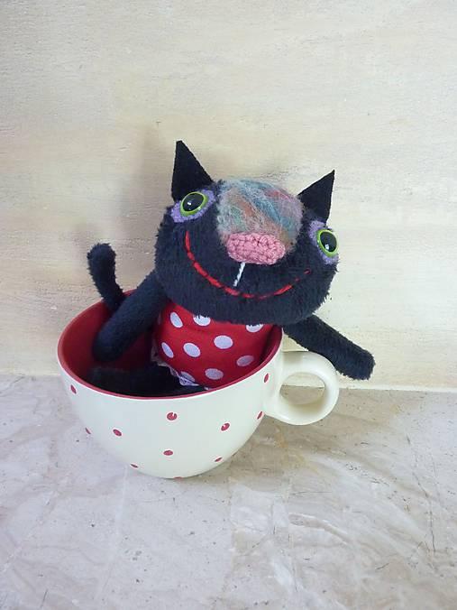 Čierna mačička na mačička
