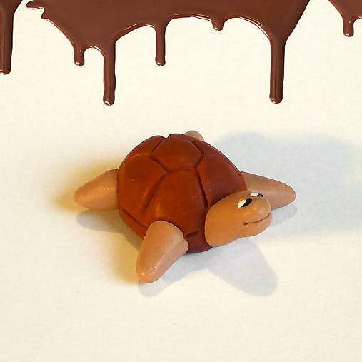 Čokoládové želvičky skladom (:D)