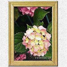 Obrázky - Obrázky (Gučka kvetov :-)) - 7027358_