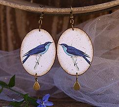 Náušnice - Vtáčiky - 7031331_