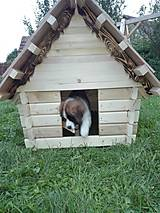 Pre zvieratká - Búda pre psa- domček - 7038606_