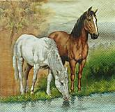 Papier - S754 - Servítky - kôň, kone, horses, rieka - 7046421_