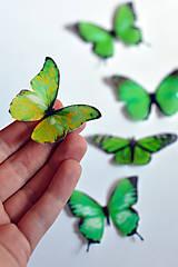 Drobnosti - Motýliky zelené (6 ks) - 7065837_