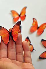 Drobnosti - Nové jedlé motýliky oranžové (6 ks) - 7066035_