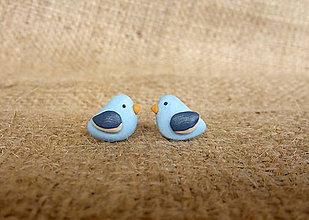 Náušnice - Modré vtáčiky - 7081927_