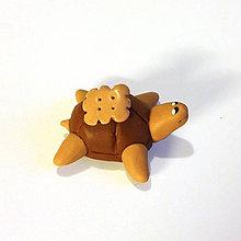 Hračky - Čokoládové želvičky na zákazku (s keksíkom NA ZÁKAZKU) - 7084472_