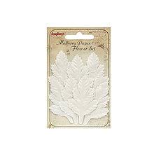 Papier - Sada bielych listov - Cedar White 7ks - 7093368_