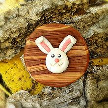 Odznaky/Brošne - FIMO drevené brošne hravé (zajačik) - 7097979_