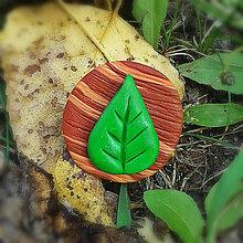 Odznaky/Brošne - FIMO drevené brošne - prírodné motívy (list NA ZÁKAZKU) - 7101841_