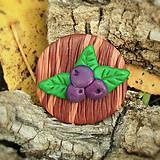 Odznaky/Brošne - Drevená brošňa čučoriedky NA ZÁKAZKU - 7104387_