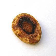 Odznaky/Brošne - Špaltovaný jaseňový kalus - placka - 7110129_