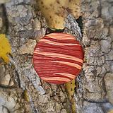 Odznaky/Brošne - FIMO drevené brošne - prírodné motívy - 7118570_