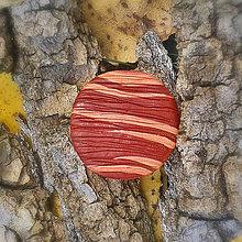 Odznaky/Brošne - FIMO drevené brošne - prírodné motívy (drevo) - 7118570_