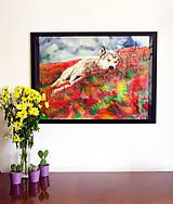 Obrazy - Wolf dreams - 7124411_