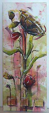 Obrazy - Červené maky ( štvor  obraz) - 7128833_