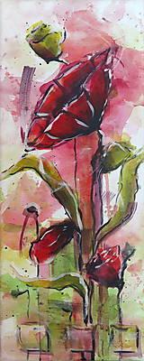 Obrazy - Červené maky ( štvor  obraz) - 7128835_