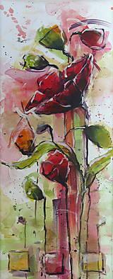 Obrazy - Červené maky ( štvor  obraz) - 7128840_