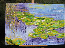 Obrazy - Na hladine jazierka - 7135255_