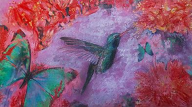 Obrazy - Kolibrík z Rajskej záhrady - 7144768_