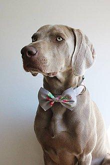 Pre zvieratká - Sivý obojok s ružami a motýlikom - Oliver - 7154579_