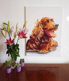 Obrazy - maľba psa - 7165335_