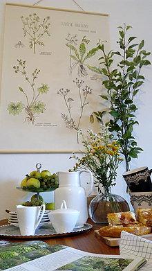 Obrázky - Retro botanický plagát - 7170991_