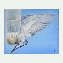 Obrazy - Vetřelec - olejomalba na plátně - 7174083_