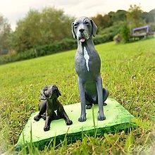 Socha - Nemecká doga - socha podľa fotografie - 7180989_