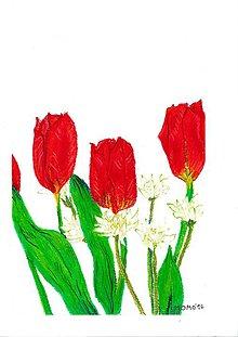 Obrazy - Tulipán a biely kvet, olejový pastel - 7205160_
