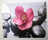 Papier - Reprodukcia R7- Kamene a orchidea - 7233329_