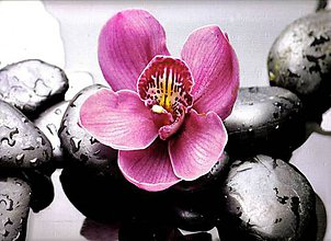Papier - Reprodukcia R7- Kamene a orchidea - 7233389_