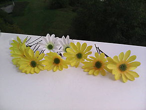 Ozdoby do vlasov - Vlásenky - 7243618_