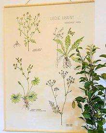 Obrázky - Retro botanický plagát - 7250072_