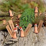 Vianoční ježkovia - menovky pre vašich hostí