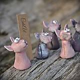 Darčeky pre svadobných hostí, menovky - mačky Sphynx